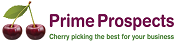 Prime Prospects (part of CMR Group.com Ltd), Exhibiting at The Business Show