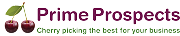 Prime Prospects (part of CMR Group.com Ltd): Exhibiting at the Great British Business Show